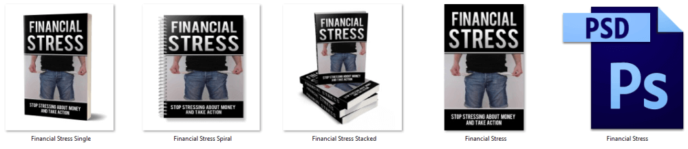 Financial-Stress-PLR-eCover-Graphics